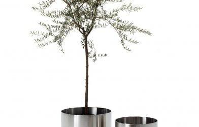 Nox FLora Planteskjuler